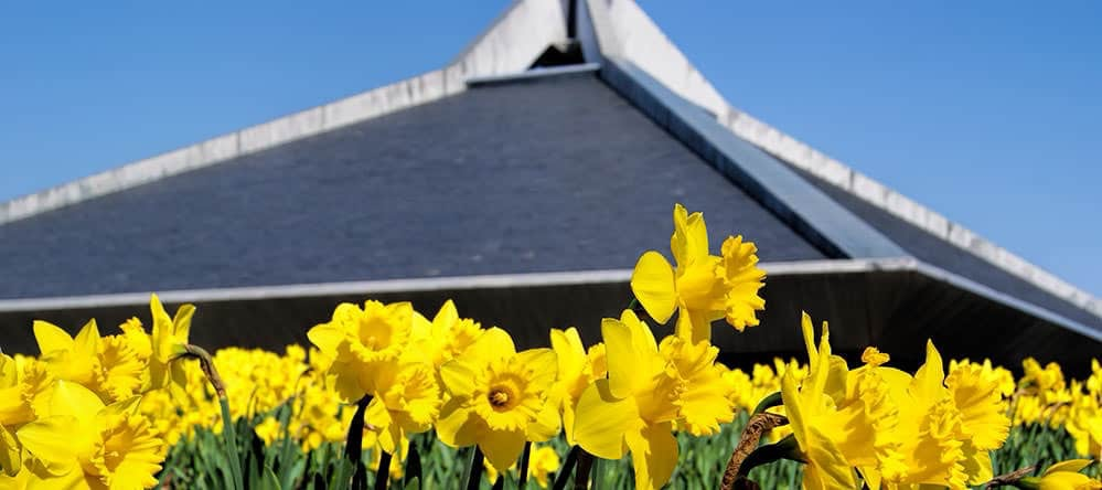 North Christian Church and tulips - Columbus, Indiana - photo by Don Nissen