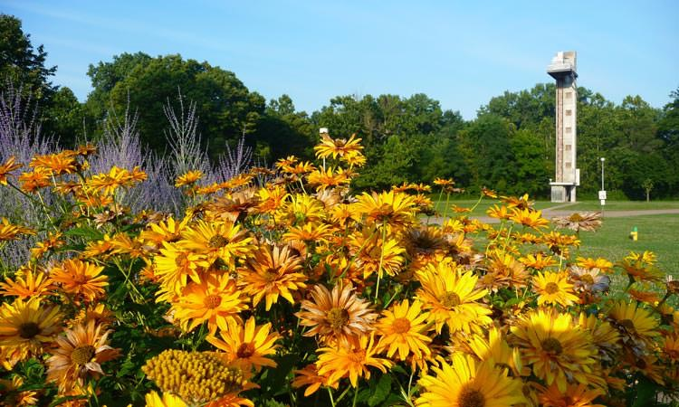 mill-race-park-columbus-in-tower-flowers