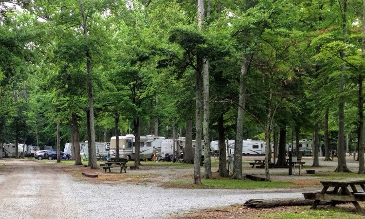 Image - tent interior