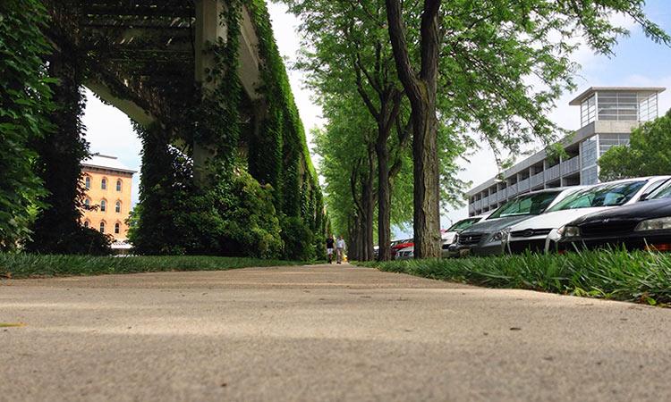 jackson-street-sidewalk