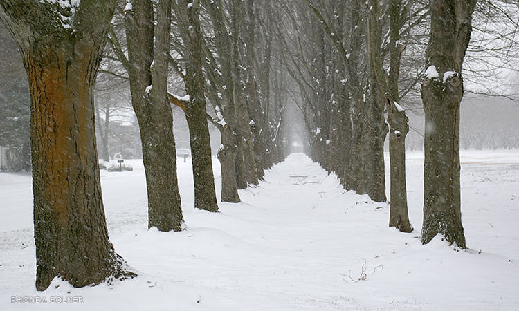 north-christian-church-columbus-in-winter