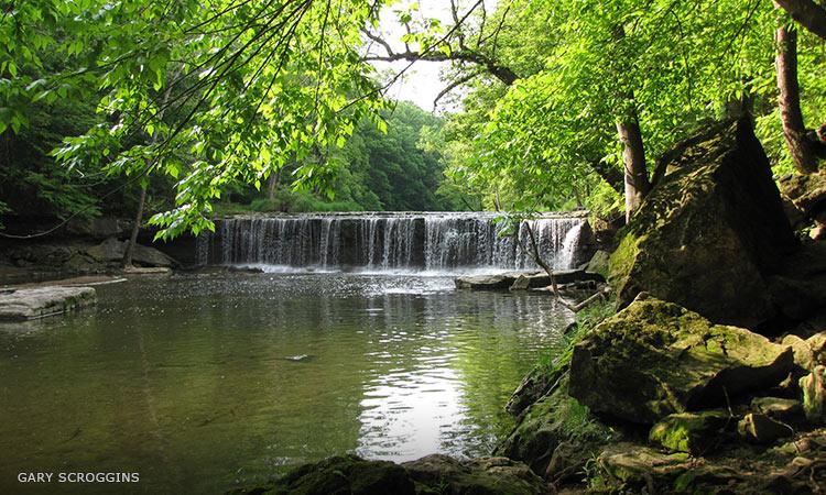 Anderson Falls, by Gary Scroggins