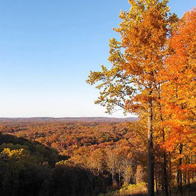 Brown County Park vista, photo by Gary Scroggins