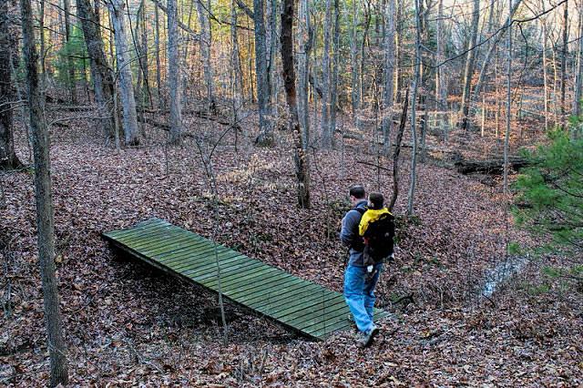 Tangeman Woods, Columbus, Indiana