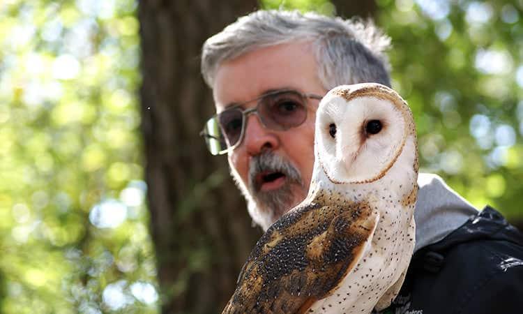 wildlife educator with owl at Utopia Wildlife
