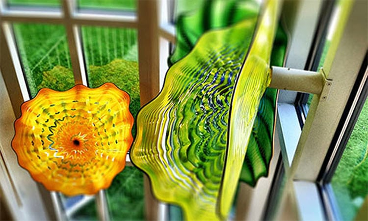 chihuly-placeholder