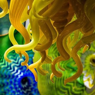 Dale Chihuly Chandelier and Persians