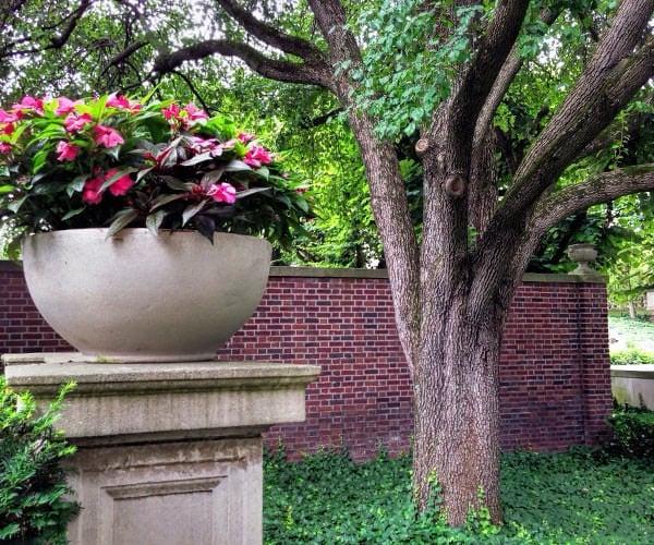 Inn at Irwin Gardens - flower pot